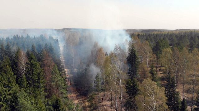 The State Forests organization units estimate daily fire danger rating levels of forests in 42 forecasted zones that does not include highlands (video from April 26)