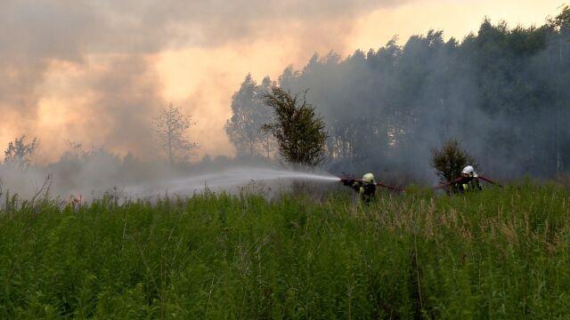 Pożar trawy w Łodzi