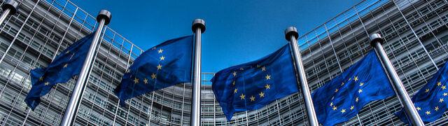 Ustalono zasady wysłuchania Polski  w sprawie artykułu 7