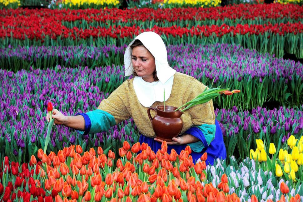 Amsterdam, Narodowy Dzień Tulipana
