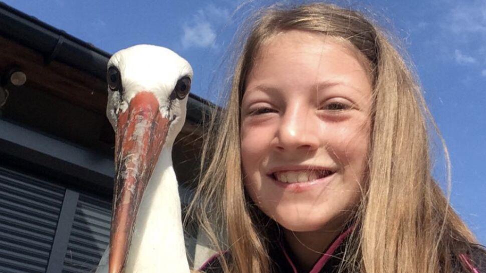 """""""Mamo, trzymam na rękach bociana"""".  10-latka i jej brat pomogli rannemu ptakowi"""