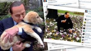 Rodzina, pieski i kwiatki.  Berlusconi ociepla wizerunek