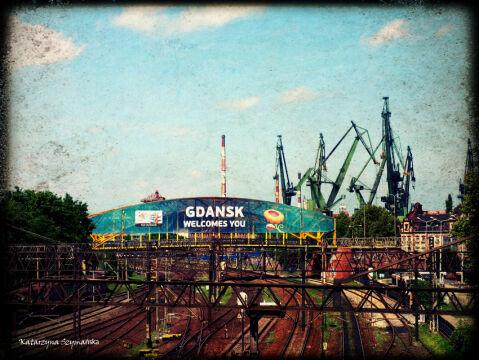 Żurawie wpisały sie na dobre w krajobraz Gdańska