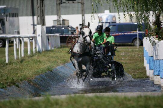 Przeszkody były wyzwaniem dla ludzi i koni