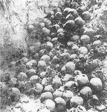 Szczątki ofiar z Ostrówek i Woli Ostrowieckiej wydobyte z dołów śmierci podczas ekshumacji w sierpniu 1992 r. Zbiory Leona Popka