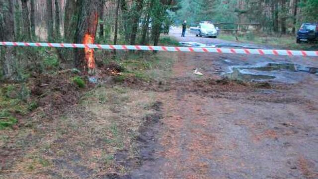 Spowodowała wypadek po pijanemu, straciła trzyletnią córkę. Tragedia na leśnej drodze
