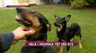 Hela i Helenka
