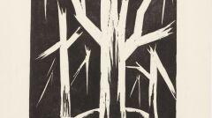 Stefan Szmaj - Suche drzewa