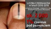 Lekarze ostrzegają: manicure może być niebezpieczny