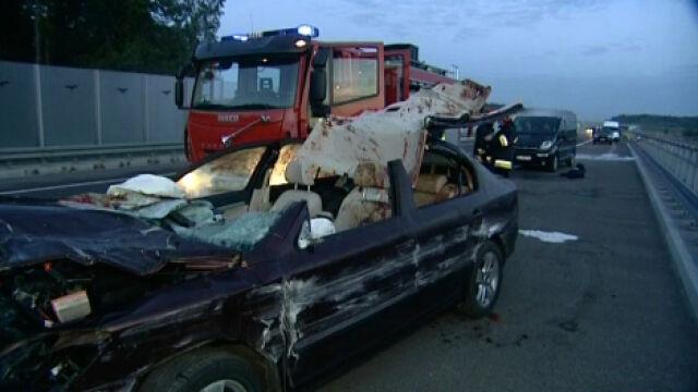 Łoś na autostradzie, zabezpieczeń wciąż nie ma