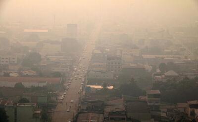 Pożary lasów deszczowych Amazonii