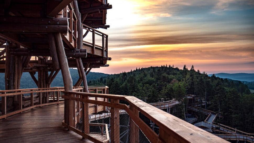 Spacer na wysokości 17. piętra w koronach drzew i zjeżdżalnia długa na 60 metrów. Pięknie!