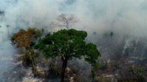 Bolsonaro wysyła wojsko do walki z pożarami