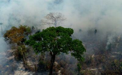 Prezydent Brazylii zgodził się na użycie wojska w walce z pożarami w Amazonii
