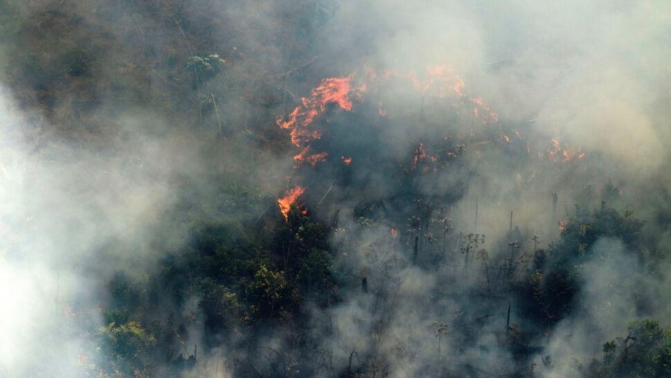 Wielkie pożary w Amazonii