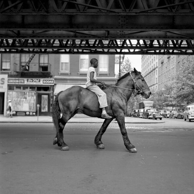"""""""African-American Man on Horse NYC"""""""