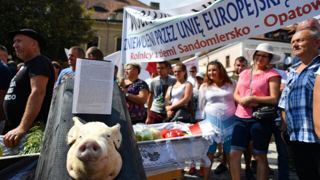 A coffin with a pig's head and a sharp exchange of opinions. Farmers protested during the PiS convention