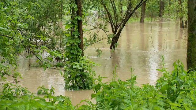 Rzeka Wisłoka wylała. Alert RCB: możliwe podtopienia i przerwy w dostawie prądu