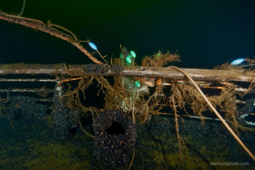 Złożyli prochy zmarłego na podwodnym cmentarzysku