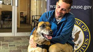Byli razem na misji w Afganistanie. Były żołnierz sześć lat walczył o adopcję psa tropiciela