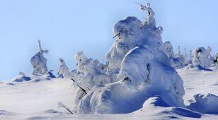 """Atak zimowych """"upałów"""""""