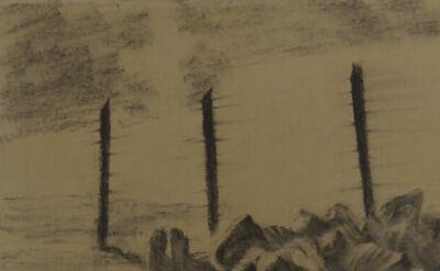 Artysta zdokumentował Auschwitz