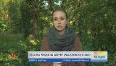 W lesie znaleziono ciało 72-letniej grzybiarki