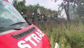 Policja: Samolot nagle zaczął spadać