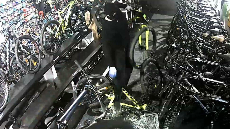 Włamanie do sklepu rowerowego. Właściciel opublikował nagranie