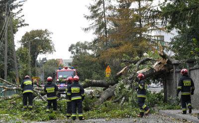 Wiało 130 km/h. Połamane drzewa, zerwane linie energetyczne