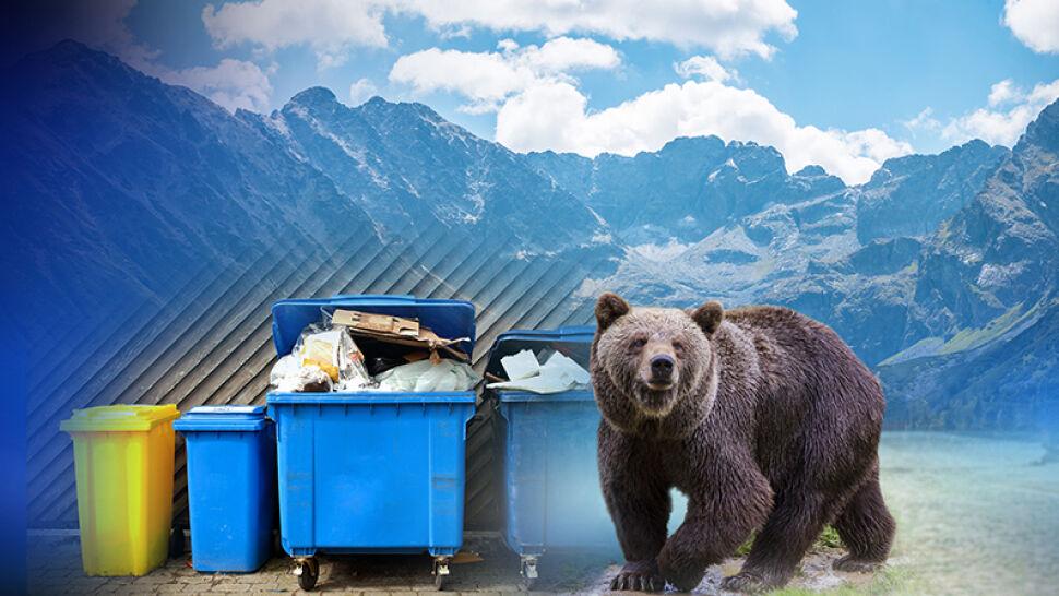 """""""Wiedzą, kiedy jest największa ilość śmieci"""". Danka z dziećmi przyłapana przez kamerę"""