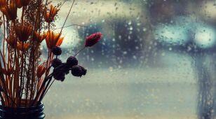 Opady deszczu i tylko kilkanaście stopni Celsjusza