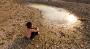 Cena za życie, czyli ile trzeba zainwestować, żeby przeżyć zmianę klimatu