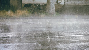 Ulewny deszcz, silny wiatr. Zapowiedź ostrzeżeń
