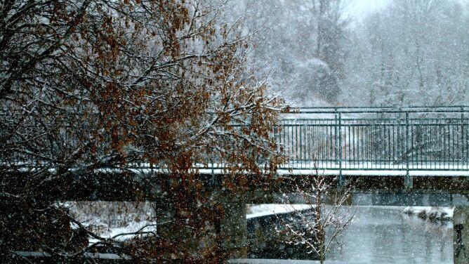 Alarmy i prognozy zagrożeń. Niebezpieczne mgły, porywy wiatru, opady śniegu i lód