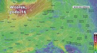 Prognozowane porywy wiatru w kolejnych dniach (Ventusky.com)